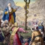 Rev 9 Moses